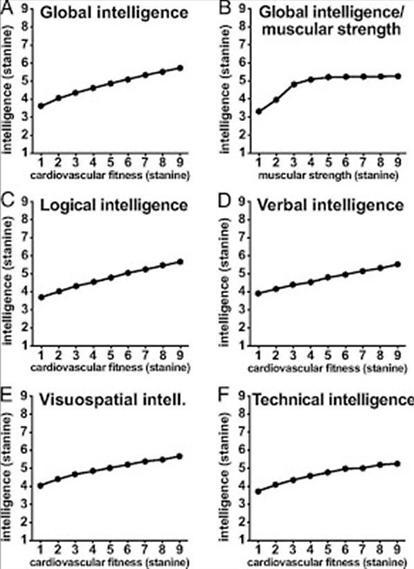 Bilden visar ett linjärt samband mellan aerob kapacitet och intelligens