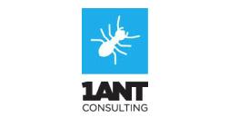 1 ANT 4 BIZ CONSULTING