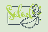 Hälsotips från Sanitas Estepona – Kycklingsallad