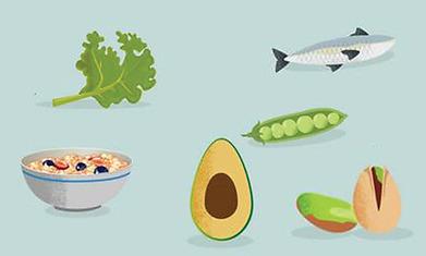 Lebensmittel um den Cholesterinspiegel zu senken
