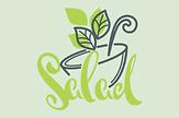 Proteinreiche Salate – Sanitas Estepona