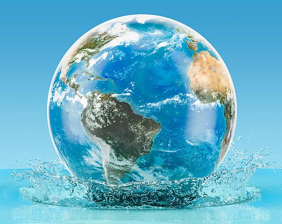 Städsällskapet har över 20 års erfarenhet och använder biotekniska, miljövänliga produkter