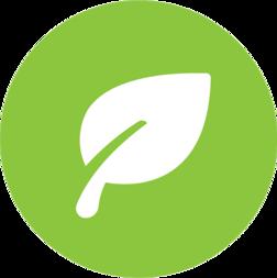 Bästa miljöalternativet inom rengöring, städning och luktborttagning
