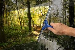 Professionell fönsterputs i Stockholm med städföretaget Städsällskapet