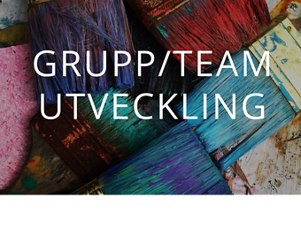 Grupp/Team Utveckling