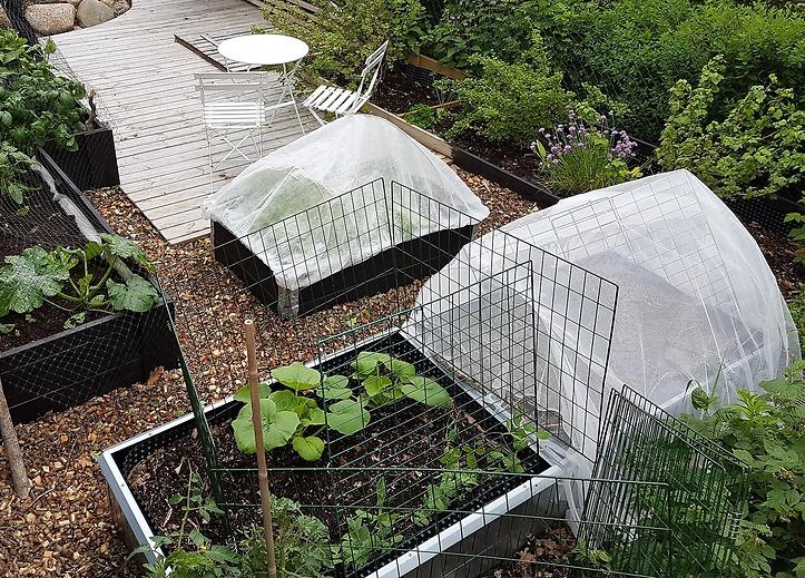 Trädgårdsdesign - trädgårdsland