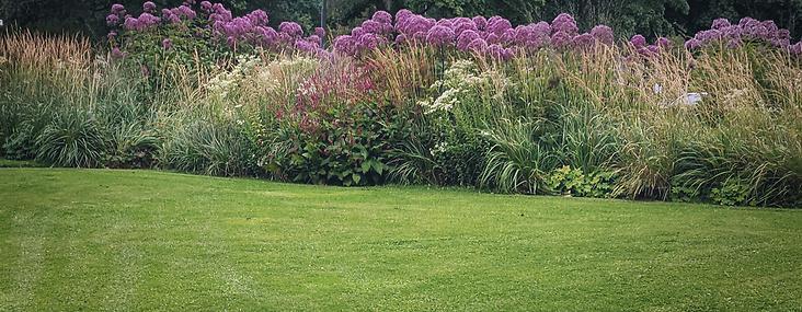 Trädgårdsdesign - gräsmatta