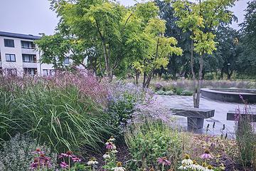 Trädgårdsdesign - Perennparken Skärholmen